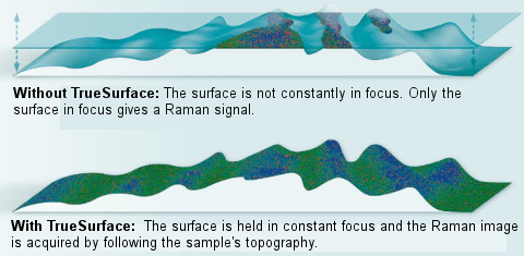 The TrueSurface Principle