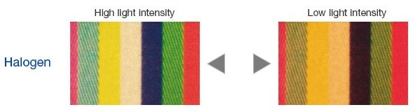 Color varies with light intensity.