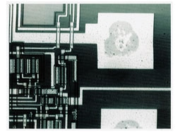 IR image of an electrode section