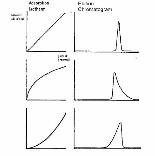 Correlation of peak form and sorption isotherm for finite and infinite dilution.
