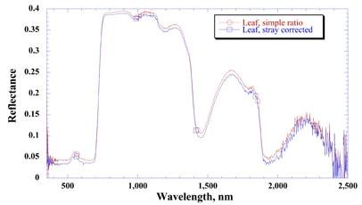 Reflectance spectrum of a leaf