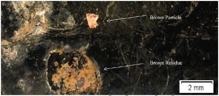 Optical Micrograph of Brown Particle and Brown Residue.