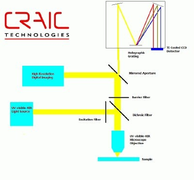 microfluorometer