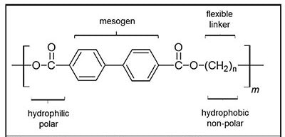 Representative example LCP monomer showing hydrophobic and hydrophilic regions, mesogen, and the flexible linker region.