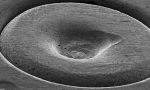 Firing pin impression in centre of a .45 cartridge.