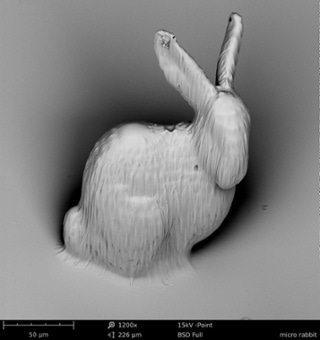 A SEM image of a 3D printed rabbit. SEM was used to investigate the object for defects.