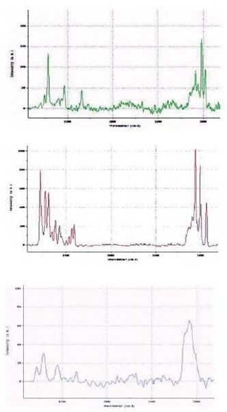 Raman spectra for the different components in the explosive material.