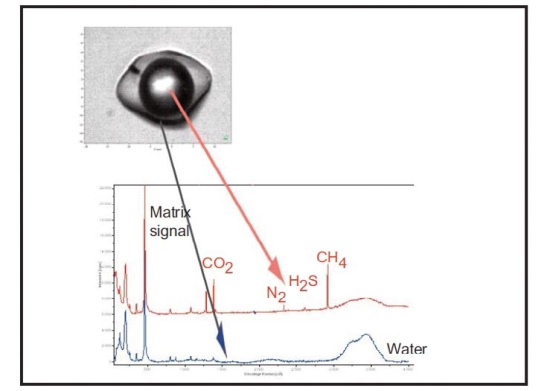 Raman spectra obtained in different areas of the fluid inclusion