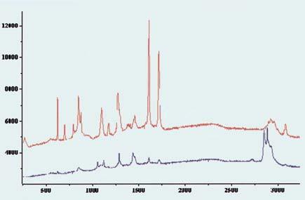 Polyethylene Polybutylene Terephtalate (PBT) blend