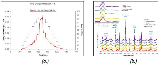 DVS water sorption and desorption cycle (a.) and Raman spectra (b.) for β D-mannitol.