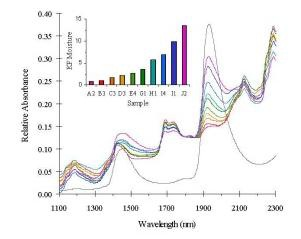 Diffuse reflectance near-infrared spectra of lyophilized samples containing varying amounts of moisture as indicated in the inset bar graph.