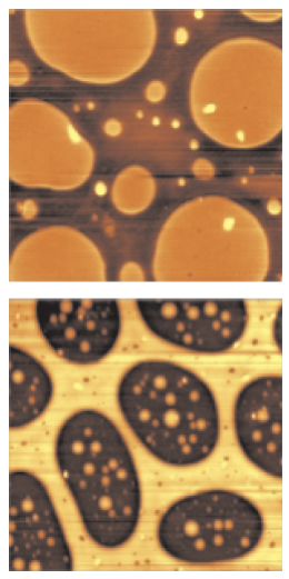 Topography of polymer blends: Top: SBR-PMMA (image size 7x7x0.03µm3) Bottom: SBS-PMMA (image size 10x10x0.08µm3).
