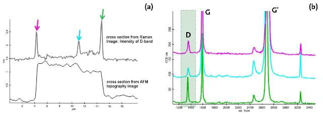 (a) Comparison of D-band intensities with the height profile along the cross section indicated in Figure 2b. (b) Raman spectra from the positions marked in Figure 5a.