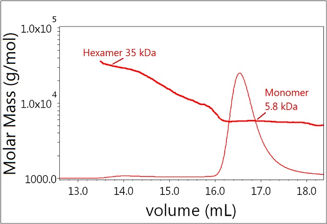 Plot of molar mass vs. time of sample 1. The UV signal at 280nm is plotted as an overlay. The molar masses were calculated using DRI and LS.