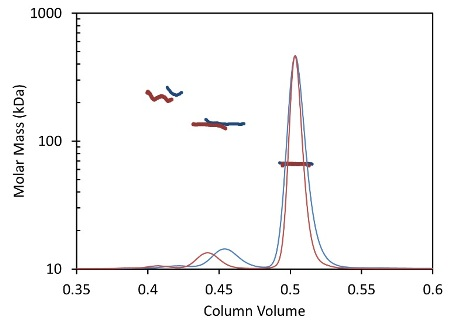 Light scattering data and measured molar mass for a protein separated by UHPLC and detected using the µDAWN and UT-rEX (red) overlaid with the separation by standard HPLC and detected with the miniDAWN TREOS and Optilab T-rEX (blue).