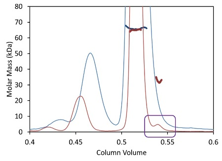 Light scattering data and measured molar mass for a protein separated by UHPLC (red) overlaid with the separation by standard HPLC (blue).