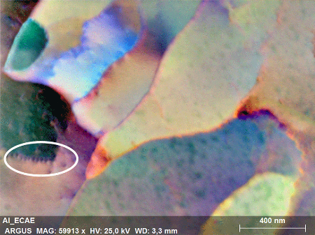 FSE image acquired in transmission mode with individual dislocations highlighted