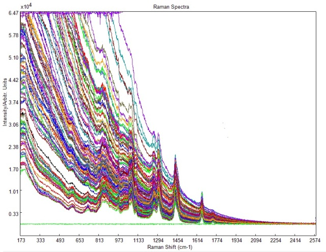 Raw Raman spectra of different types of edible oil
