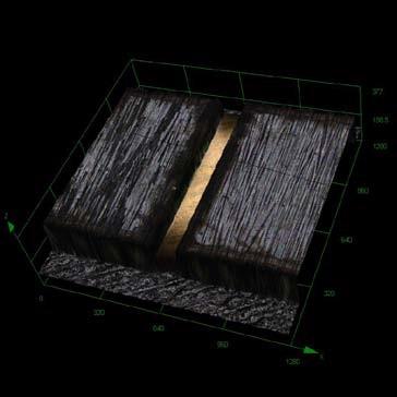 Carbon Hinge. OLS 4000 Laser confocal mode, 3D.