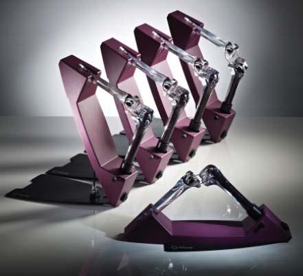 AAOS bone models