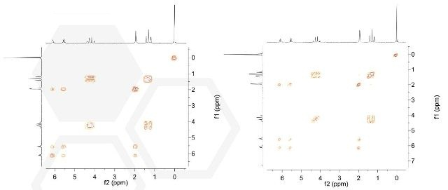 Left: Single scan COSY spectrum of ethylmethacrylate. Right: High resolution COSY-45 ethyl methacrylate 5 wt% in CDCl3