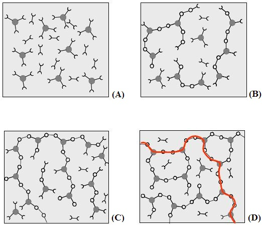 Schematic representation of structural development during thermoset curing: (A) unreacted monomers; (B) formation of small branched molecules; (C) the gel point: a path of covalent bonds exists across the sample; (D) the cured, cross linked polymer with some unreacted groups and reactants.