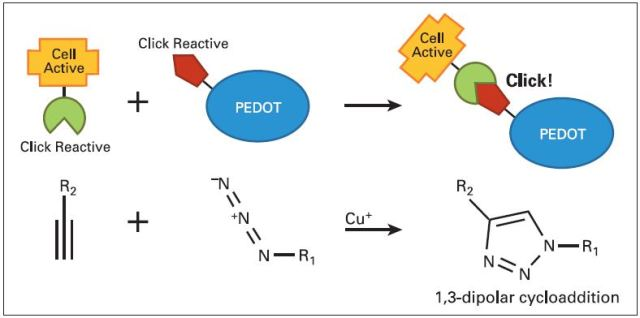 Components and principle of 'click' chemistry