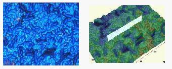 eta optical profilers exhibit true film colors.