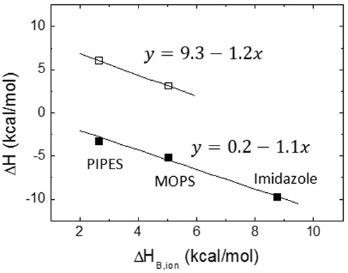 Proton exchange coupled to ligand binding constitutes the molecular basis for the pH dependency of ligand binding interactions. Calorimetric titrations were performed for two different ligands (open and close squares) under the same conditions (25°C, pH 7, NaCl 150 mM) employing buffers with similar pKa but different ionization enthalpies (PIPES 2.68 kcal/mol, MOPS 5.05 kcal/mol, imidazole 8.77 kcal/mol). Because the measured enthalpy is markedly dependent on the ionization enthalpy of the buffer with a negative slope, it is concluded that the formation of the macromolecule-ligand complex is accompanied by a net deprotonation. The slope is similar for both ligands, close to 1, and, therefore, at least one proton is released from the complex to the bulk solution. However, the buffer-independent biding enthalpy is significantly different for both ligands: 9.3 kcal/mol and 0.2 kcal/mol. In the vicinity of pH 7 (at least   ApH   < 2), according to Eq. 13 an increase/decrease in pH will lead to an increase/decrease in the binding affinity for both ligands; in particular, a change of 1 unit in pH will increase/decrease the equilibrium association constant by a factor of 10, approximately.