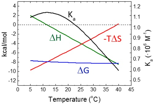 Temperature dependency of the thermodynamic binding profile for a macromolecule-ligand interaction with the following binding parameters: Ka = 106 M-1, AG = -8.2 kcal/mol, ΔH = -4 kcal/mol, -TAS = -4.2 kcal/mol, and ACP = -0.3 kcal/mol. The slope of ΔH is equal to ACP, while the slope of -TAS is -(ACP+AS); because usually ACP is considerably larger than AS (within the experimental temperature range), the slopes of the enthalpic and the entropic contributions are very similar, resulting in a Gibbs energy of binding rather insensitive to temperature. Accordingly, it can be observed that the equilibrium association constant shows very little variation with temperature, which, together with the usual experimental uncertainty, makes the estimation of the binding enthalpy through the van