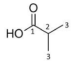 Isobutyric acid: Spectrum 2