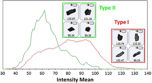 Intensity Mean distribution for the Type I and Type II particles as determined by the Raman spectroscopic results. Insets display example images of particles from each group.