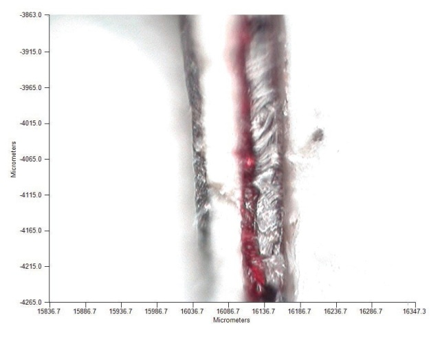 Visible image of cross section of a paint chip sample on IR microscope.