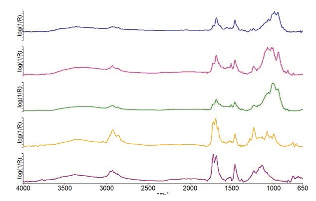 Spectra obtained for the different layers in the ATR experiment.