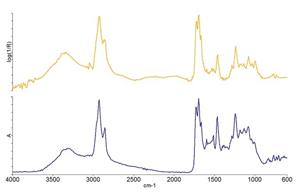ATR-corrected spectrum (top) and transmission spectrum (bottom) for one of the layers in the paint chip sample.