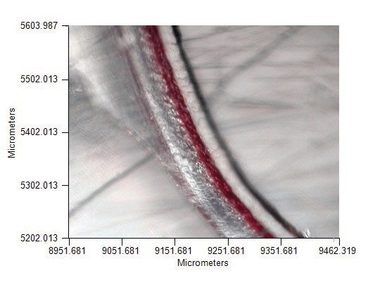 Microtomed paint chip sample is shown on KBr window for transmission measurement.