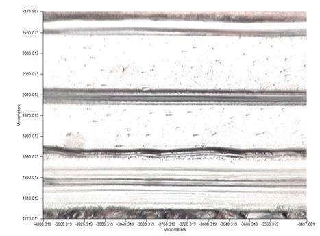 Visible image of the polymer laminate measured in transmission