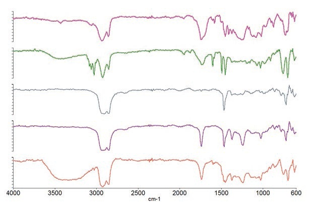 Spectra of the polymers present in different laminate layers.