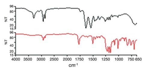 Mid IR spectra of auto-components. Top: sample 1, bottom: sample