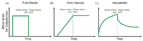 Illustration showing the strain response to an applied stress for (a) purely elastic material (b) purely viscous material (c) viscoelastic material.