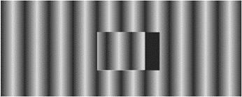 Fringe image distortion