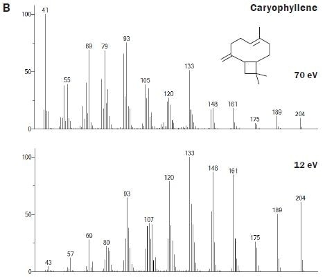 Spectral comparisons at 70 and 12 eV for a selection of the mono- and sesquiterpenoids that are important for contributing the characteristic aroma of hops to beer.