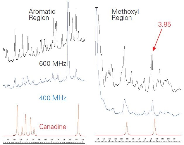 Expansions of the aromatic (left) and methoxyl (right) regions of the 1H NMR spectra of goldenseal at 600 MHz (black) and 400 MHz (blue) as compared to the SBASE entry for canadine (red). The signal-to-noise of the methoxyl signal (3 equivalent protons) at 3.85 ppm was 494 at 400 MHz and 891 at 600 MHz. Slight shifts in peak positions were observed.