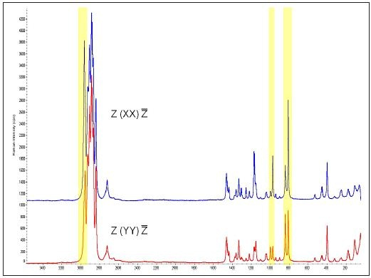Polarized Raman spectra from Sample 2, the oriented iPP Film. Colored areas (yellow) indicate 3 sets of peaks that are used to represent the differences.