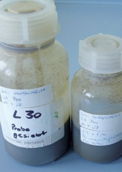 Various samples from the digester are ready for analysis