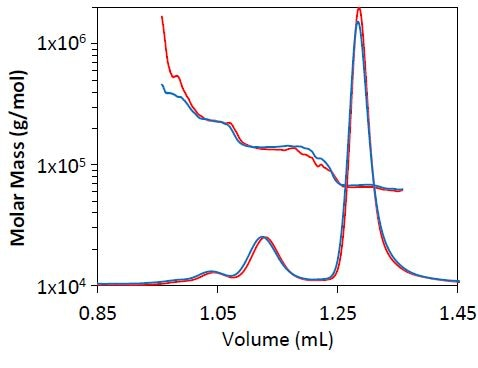 Light scattering chromatogram for BSA separation at 0.3mL/min (blue) and 0.5mL/min (red). The measured molar mass by MALS is overlaid for each chromatogram.