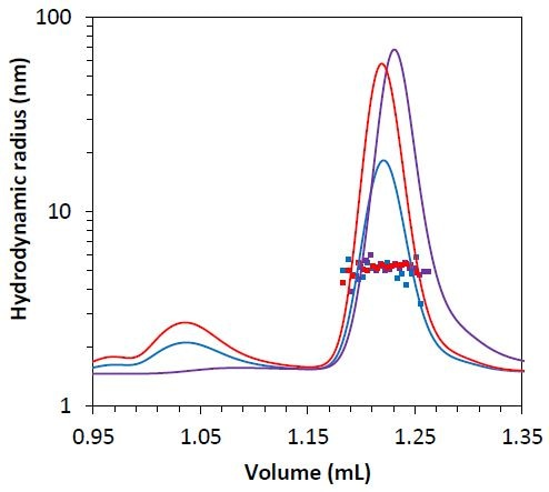 Measured hydrodynamic radius data for the mAb2 monomer under stability test 1 (blue), 2 (red), and 3 (purple) overlaid on light scattering chromatogram.