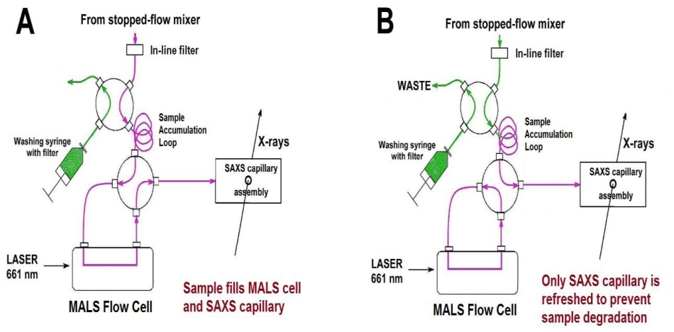 Schematic diagram of the stopped-flow MALS/SAXS set-up. Two positions of the lower valve are shown; other valve combinations are used during an experiment (see [5]). Green, buffer; magenta, reacting mixture.