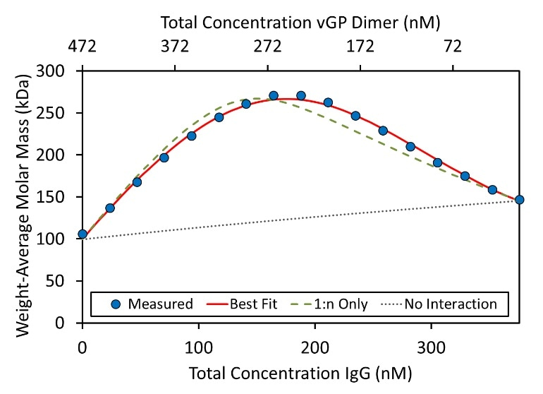 """Weight-average molar mass for each composition of the hetero-association gradient. The formation of IgG:vGP complexes results in an increase in measured molar mass. The best fit (red line) requires higher order association than simply (IgG)(GP) and (IgG)(GP)2, shown by the """"1:n Only"""" curve (green dashed line). The molar concentration of GP refers to the dimer concentration"""