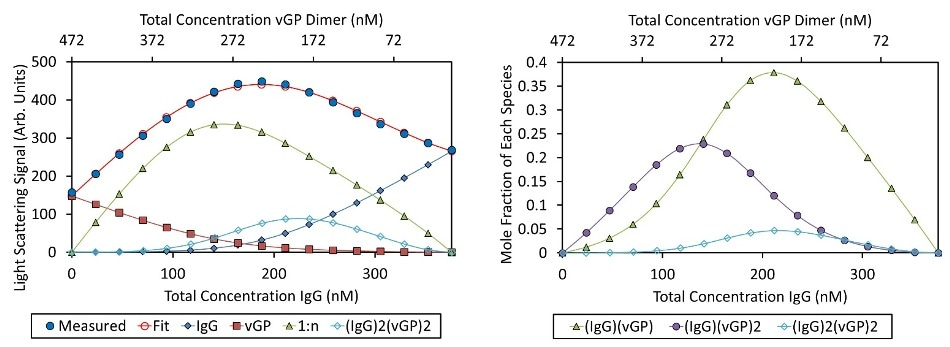 """Best fit of CG-MALS data (left) and mole fraction of each species (right). Left: The CG-MALS hetero-association data was best fit to a model wherein each Fab of the IgG bound to the vGP dimer with equivalent affinity. The best fit () to the measured )?light scattering data () is made up of the sum of the contributions of the free monomer IgG, free vGP dimer, IgG bound to one or two vGP dimers (""""1:n""""), and a higher order complex of two IgG molecules bound to two vGP dimers. Right: The light scattering data are converted to molar concentration of each complex. The fraction of unbound IgG monomer and vGP dimer have been left off for clarity."""
